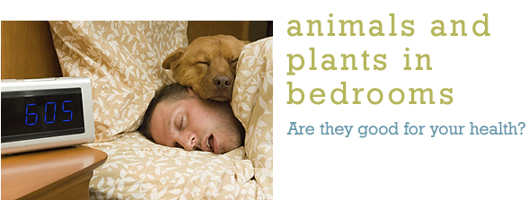 Animals and Plants in Bedrooms
