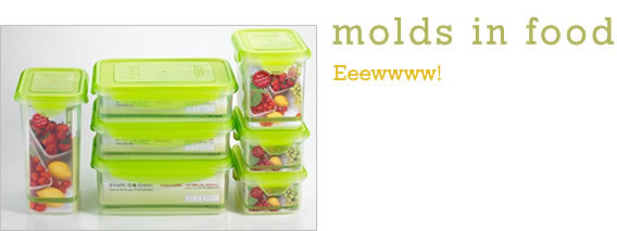 Molds in Food
