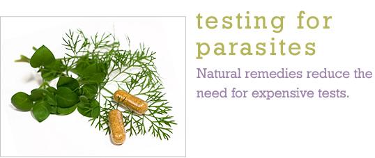 Testing For Parasites Dr Pepi S Health Tips