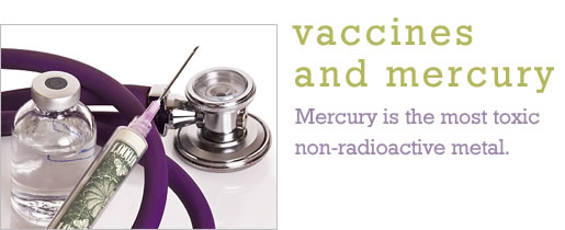Vaccines and Mercury